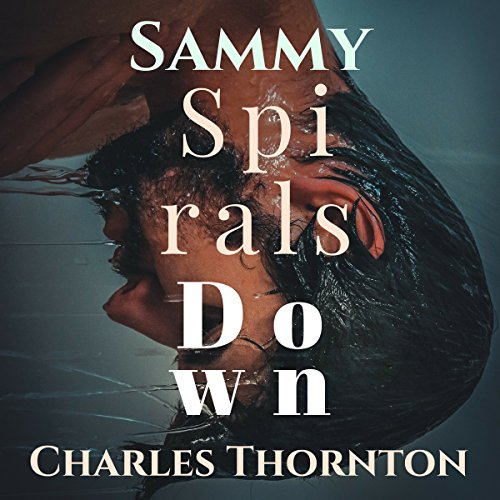 Sammy Spirals Down audiobook cover art