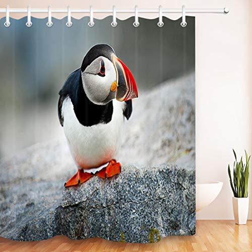 LB Papageientaucher,der auf dem Felsen Steht,Wasserfest und Anti-Mehltau Duschvorhang mit Haken,150×180