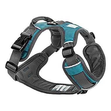 Embark Active Dog Harness, Easy On and Off with Front and Back Leash Attachment Points & Control Handle - No Pull Training, Size Adjustable and No Choke (Small - Teal Blue)