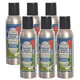 Smoke Odor Exterminator Removes Cigar/Cigarette/Pipe/Tobacco Smells 7oz Spray Air Freshener, Clothesline Fresh (6-Pack)