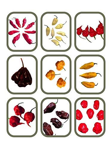 Der Scoville Hammer Chili Sortiment 9 Sorten von 500.000 bis 2.000.000 Scoville