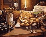 Fuumuui DIY Malen Nach Zahlen-Vorgedruckt Leinwand-Ölgemälde Geschenk für Erwachsene Kinder Kits Home Haus Dekor - Maus und schlafende Katze 40*50 cm