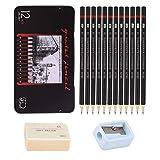 Johiux Set de lapices Dibujo Profesional y lápices De dibujo, 12 lápices De Dibujo 8B -2H, lápiz Artístico Perfecto para Principiantes, Niños o Artistas Profesionales, Gomas de Borrar y Sacapuntas