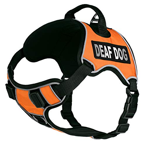 Dogline Quest No-Pull Dog Harness with Deaf Dog Reflective Removable Patches Reflective Soft Comfortable Dog Vest with Quick Release Dual Buckles Black Hardware and Handle 18 to 22 inches Orange