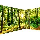 decomonkey Fototapete Wald 550x250 cm Eckfototapete Design Tapete Fototapeten Tapeten Wandtapete moderne Wand Schlafzimmer Wohnzimmer Natur