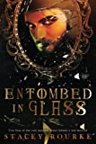 Entombed in Glass (Unfortunate Soul Chronicles, Band 2) - Stacey Rourke