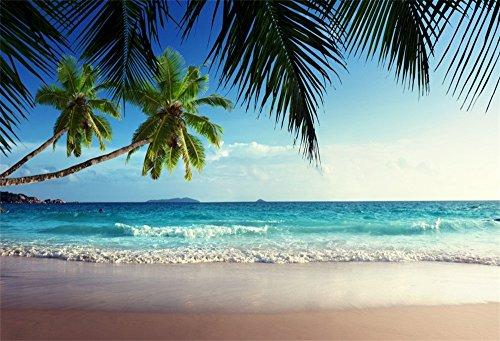 Leowefowa 2,2x1,5m Vinilo Mar Telon de Fondo Playa de Arena Tropical A la Orilla del mar Palmeras Cielo Azul Fondos para Fotografia Party Infantil Photo Studio Props Photo Booth