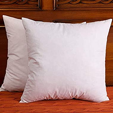 Set of 2, Cotton Fabric Throw Pillows Insert, Down and Feather Pillow Inserts, 18 X 18 Inch