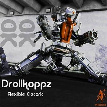 Flexible Electric