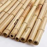 Plantas Artificiales Decorativas Valla de Bambú 100% Natural Anti-UV Bloquea el Viento Invernaderos Ventanas Pérgolas Utilizadas como Sombra para Terrazas