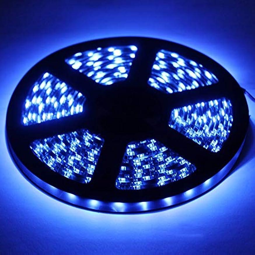 LED String Lights, Epoxy Waterproof Blue LED 2835 SMD Rope Light, 60 LED/M, Length: 5M