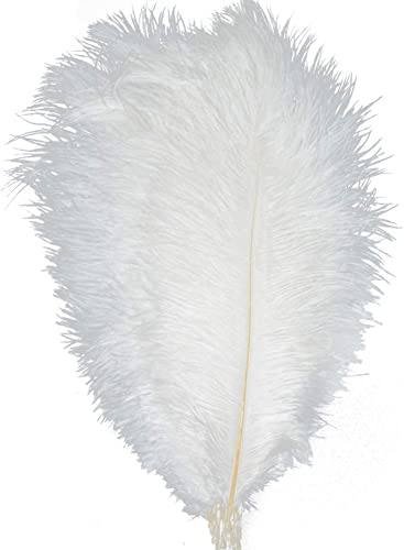 KOLIGHT Trainingsunterlagen für 25,4   30,5cm (25 cm) Natur Strau edern für Heimwerker Home Hochzeit Party Büro Dekoration Weiß