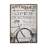 DONREGALOWEB Cuadro de Madera Estilo Vintage (Bici y Flores)