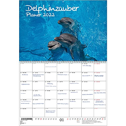 Delphinzauber - Agenda DIN A2 desplegado - Calendario para 2022 delfín - Magia del alma