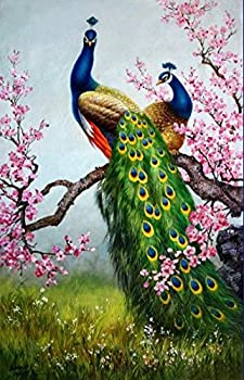 Wall art Canvas HD Print Animals Peacock Oil painting Picture Printed on canvas 16X24 Inches  No Stretch No Frame