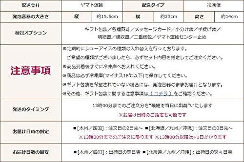 シューアイス18個入洋菓子のヒロタ6種類詰め合わせ43ml(32g)×18個