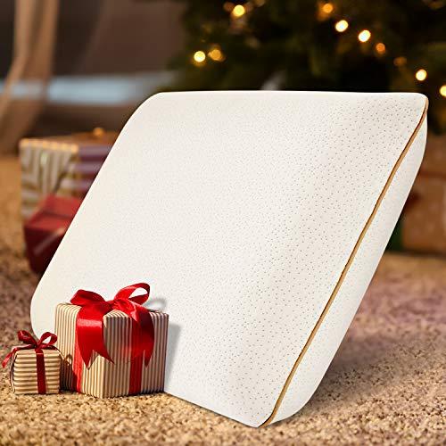 BedStory Almohada Viscoelástica, Almohada Cervical, con Gel disipador de calor, Funda Agradable para la Piel, Hipoalergenico y Antiácaros, Extraíble y Lavable, Diseño Ventilado-40x60x13cm
