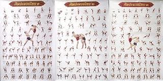 Muay Thai Kickboxing Technical Training Education 3 Posters