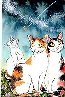 ねこの引出し 琴坂映理ポストカード「星空猫会議」