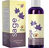Maple Holistics Sage Shampoo for Anti Dandruff with Jojoba, Argan, and Organic Tea Tree Oil – Natural, Sulfate Free Treatment for Women and Men – Safe for Color Treated Hair (8 fl. oz.)