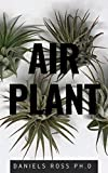 AIR PLANT: Everything You Need About Air plants : Understanding, Growing,Dispplaying,Uses and Care