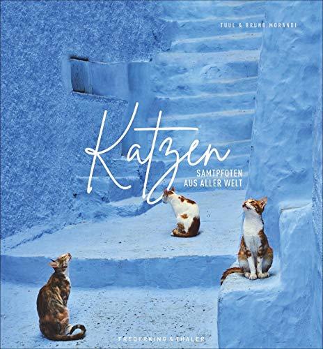Bildband: Katzen - Samtpfoten aus aller Welt. Fantastische Fotografien untermalt mit poetischen Zitaten. Ein Muss für alle Katzenliebhaber! Mit Infos ... der Katze und ihrer weltweiten Verbreitung.