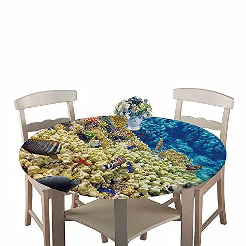 Mantel Antimanchas Redondo,Chickwin Patrón del Mundo Submarino Mantel de Mesa Impermeable Diseño de Borde Elástico,Mantel Redondo para Comedor,Fiestas,Cocina y Picnic (Estrella de mar roja,150cm)
