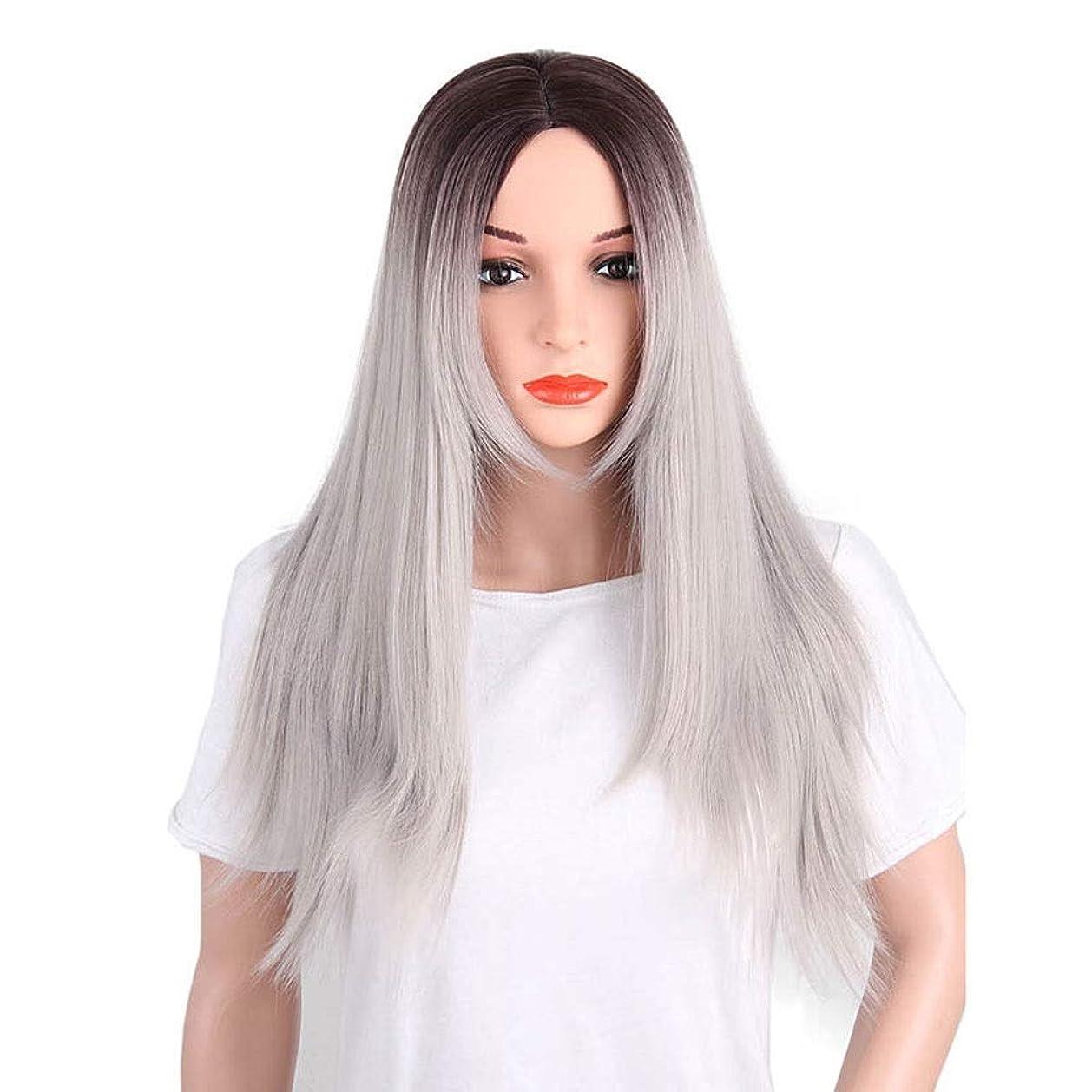 非効率的な粒子名門かつら ハイエンドの女性のヘアピース、マルチカラーの女性の長いかつら化学繊維高温シルク素材のかつら、日常の使用に適したDIYの髪のかつらさまざまな祭り (Color : Gray)