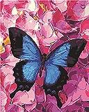 Xykhlj DIY Digital Lienzo Pintura - Mariposa Insecto animalLienzo preimpresoóleo Regalo para Adultos Niños Pintura por Numero Kits Decoración del Hogar40x50cmSin Marco