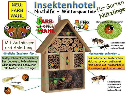 Insektenhotel - NEU MIT SCHMETTERLINGSHAUS, groß 50 cm mit Lotus-Effekt Oberflächen Beschichtung und 2 Sichtgläsern 8 und 11 mm, Beobachtungsröhrchen komplett mit Zellstoff und Füllmaterial für Nistkasten Schmetterling Haus Bienen Wildbienen Unterschlupf, XXL viele Farben Insektenkasten farbige Nistkästen Holz Insekten Insektenhäuschen, zum Hängen und Aufstellen geeignet