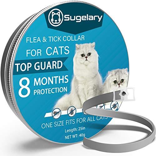 Sugelary Collare Antipulci per Gatti, Collare Antipulci Gatto Impermeabile Regolabile per 8 Mesi di Protezione, Collare Antipulci per Gatti Arricchito Con Oli Essenziali Naturali (1Pcs)