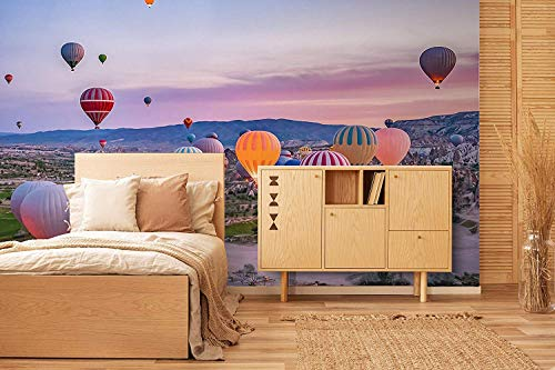 Oedim Fotomural Vinilo para Pared Globos Turquía | Fotomural para Paredes | Mural | Fotomural Vinilo Decorativo |500 x 300 cm | Decoración comedores, Salones, Habitaciones