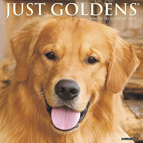 Just Goldens 2020 Wall Calendar (Dog Breed Calendar)