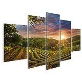 Bild Bilder auf Leinwand Teeplantage Valley Dramatische