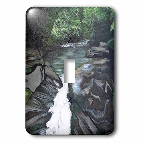 """3dRose lsp_171477_1""""A Photo Of A Painting With A Flowing Creek, Rocks, And Trees Single Toggle Switch"""