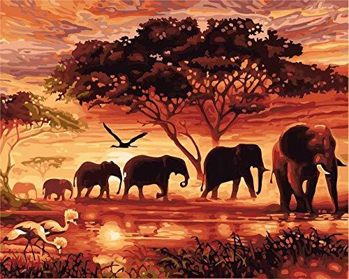 DIY Malen nach Zahlen Kit für Kinder Erwachsene Geschenke Dawn Forest Elefantenfamilie 40X50CM No Frame