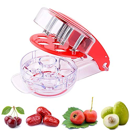 eoocvt Cherry Pitter Olive Pitter Tool Cherry Stone Remover with Pits and Juice Container Cherry Pitters - 6 Cherries