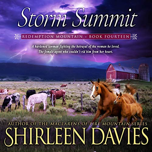 Storm Summit  By  cover art