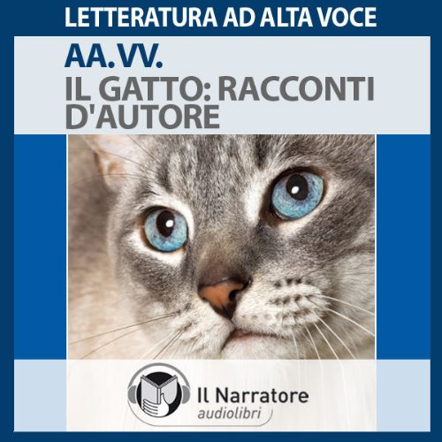 Il Gatto audiobook cover art