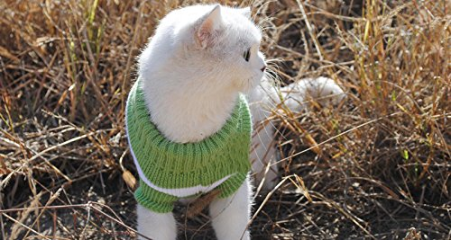 Striped Cats Sweater Aran Pullover Knitted Clothes for Small Dog Kitten Kitty Chihuahua Teddy (Green, XS)