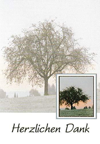 Trauer Danksagungskarten Trauerkarten mit Innentext Motiv Baum 10 Klappkarten DIN A6 im Hochformat mit weißen Umschlägen im Set Dankeskarten Dankeschön Karten Kuvert Danke sagen Beileid K259