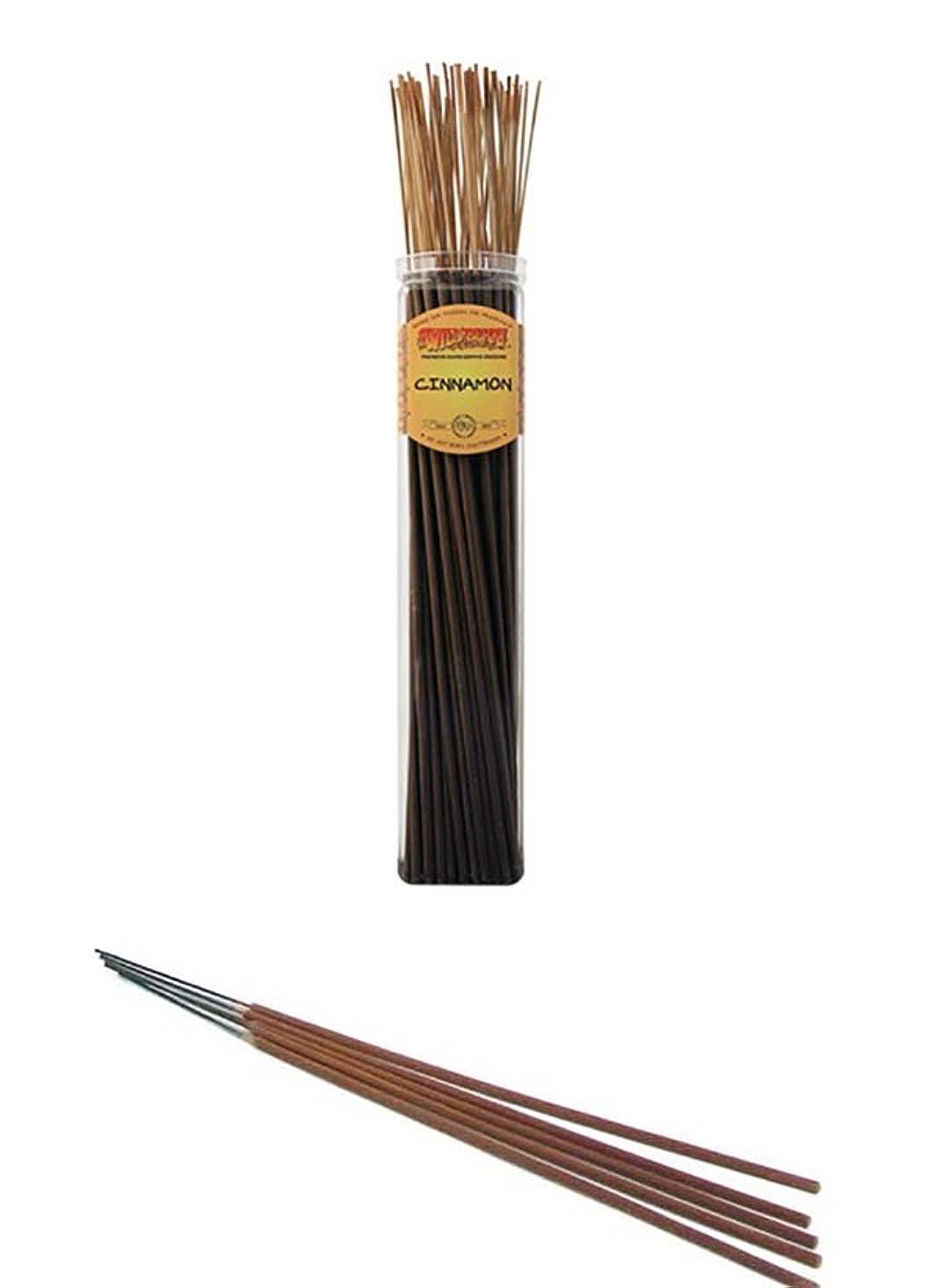 はねかける高齢者冷凍庫シナモン?–?Wild Berry Highly Fragranced Large Incense Sticks