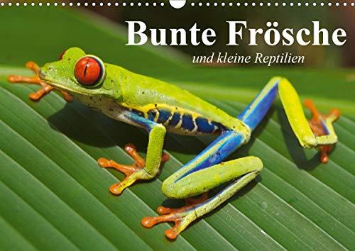 Bunte Frösche und kleine Reptilien (Wandkalender 2021 DIN A3 quer)