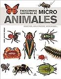 Enciclopedia Ilustrada De Micro Animales. Insectos, Crustáceos, arácnidos: 12 (Grandes Enciclopedias)