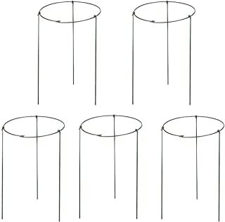 5 Pack Garden Plant Support Rings for Potted Plant, 6