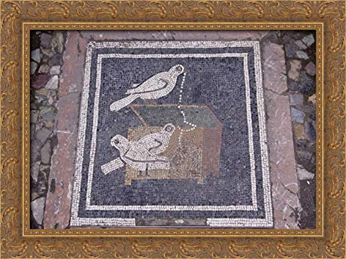 Kaveney, Wendy 40x28 Gold Ornate Framed Canvas Art Print Titled: Italy, Pompeii Bird Mosaic in House of The Faun