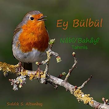 Ey Bülbül - Tahmîs (Nâbî & Bahâyî)
