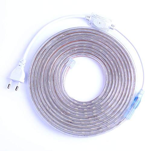 Tira LED flexible de luz 60 LED/m impermeable IP67 LED cinta LED luz con enchufe UE 5 m