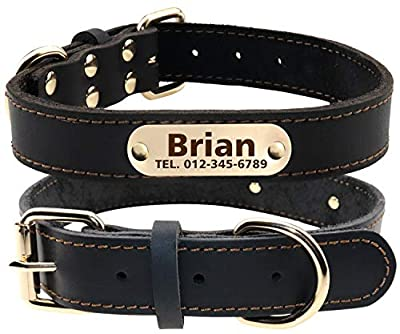 TagME Personalized Leather Dog Collars with Engraved Nameplate,Black XLarge