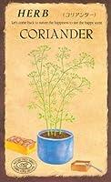 【種子】コリアンダー [0829]